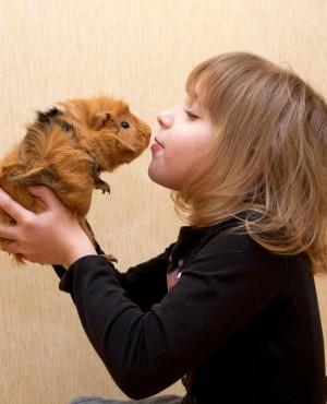 אלו חיות כדאי לגדל בבית עם ילדים? המדריך המלא
